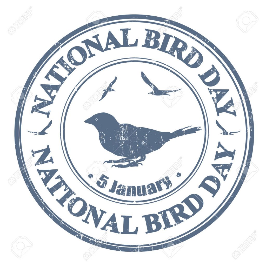 National bird day grunge rubber stamp on white, vector illustration
