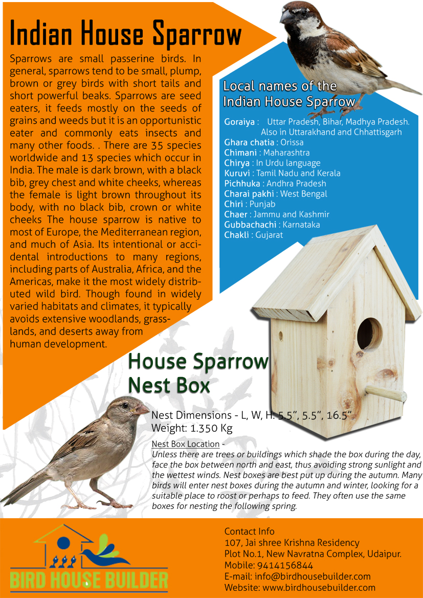 House Sparrow NestBox