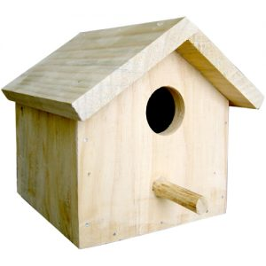 House-Sparrow-Nest-Box